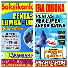 Ayo Buruan! Pentas Lumba- lumba akan Hadir untuk Menghibur Warga Bukittinggi dan Agam di Lapangan Kantin Wirabraja