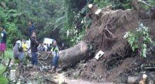 Longsor di Lintas Bukittinggi - Pasaman, Antrean Kendaraan Capai Puluhan Kilometer