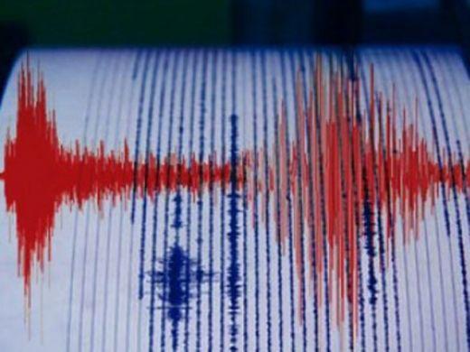 Kabupaten Kepulauan Mentawai Digoyang Gempa 4,9 SR