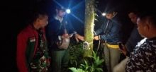 Pantau Harimau yang Berkeliaran Dekat Pemukiman di Padang Pariaman, BKSDA Pasang Kamera Trap