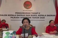 Rekomendasi Dukungan Pilgub Sumbar Dikembalikan Mulyadi, PDIP Ucapkan Terimakasih