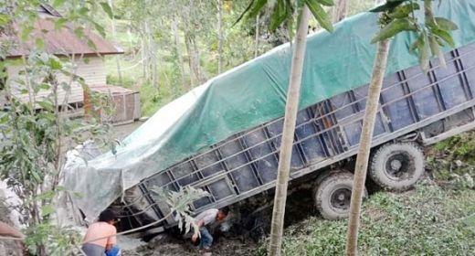 Diduga Rem Blong, Truk Semen Terguling Masuk Sawah di Solok, Sopirnya Tewas