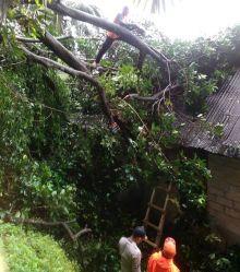 cuaca-ekstrim-landa-kota-padang-akibatnya-terjadi-longsor-dan-pohon-tumbang-dua-warga-juga-hanyut