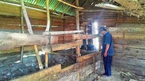 Pencurian Ternak Marak di Solok Selatan, Petani Resah