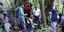 Ratusan Wisatawan Asing dan Lokal Saksikan Rafflesia yang Mekar di Batang Pohon di Maninjau